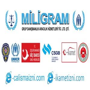 Miligram Grup Danışmanlık Aracılık Hizmetleri Tic. Ltd. Şti. iş ilanları