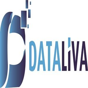 Dataliva Bilişim Hizmetleri A.Ş. iş ilanları