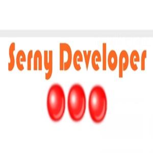 Serny Developer iş ilanları