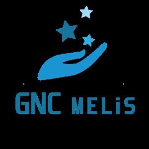 Gnc Melis Elektronik Ticareti A. Ş iş ilanları