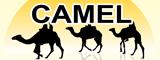 Camel Yazılım iş ilanları