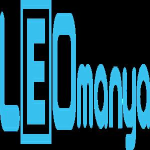 Leo Elektironik A.Ş. iş ilanları